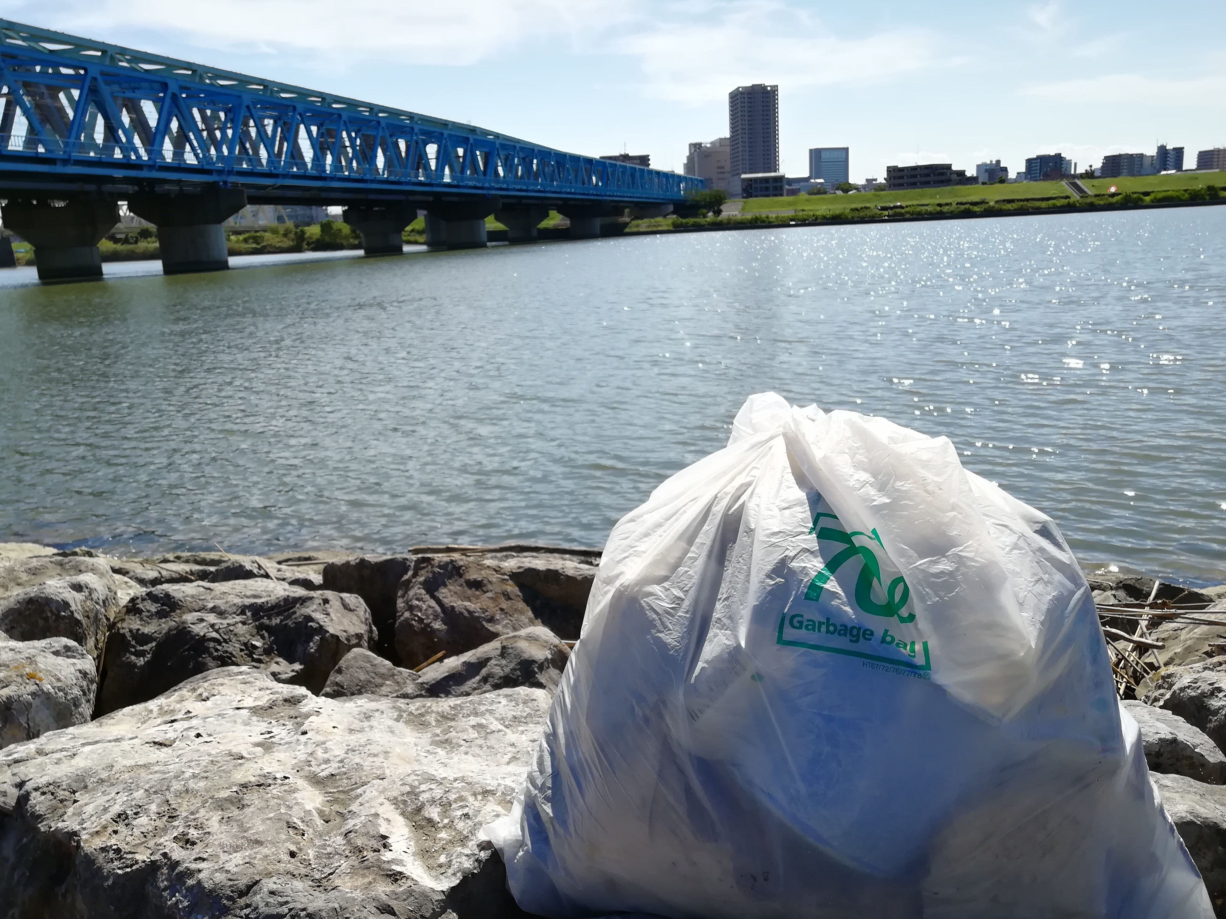 荒川河川敷でゴミ拾いをしてみた結果